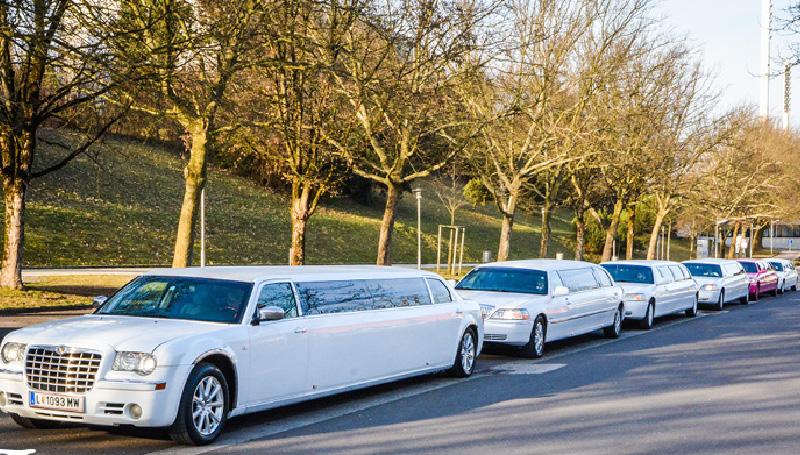 6 limousinen